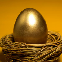 Image of a golden egg inside a nest.
